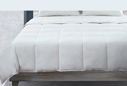 Shop Comforters at Great Sleep