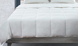 Shop Comforters at LiveComfortably
