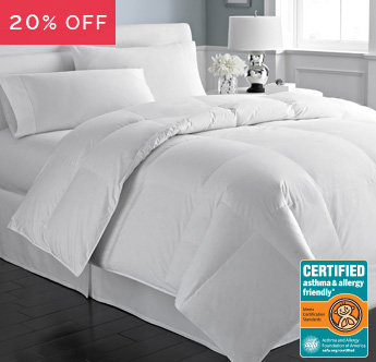 Great Sleep® Certified Asthma & Allergy Friendly® Comforter Sale - Save 20%