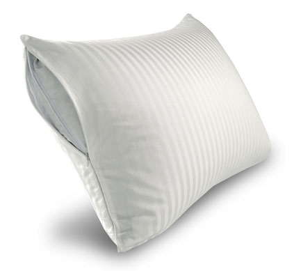 Sleep for Success!® Pillow Protector - Go There Now