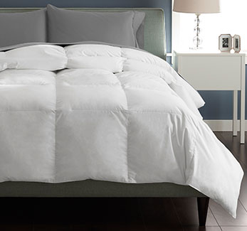 Great Sleep Comforters - Shop Now