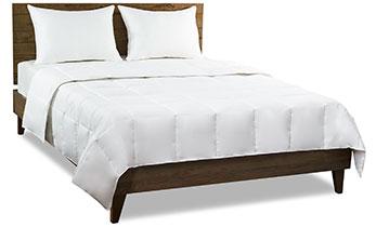 Sale - Great Sleep - Shop Now