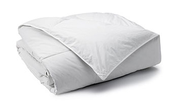 Comforters - LiveComfortably - Shop Now